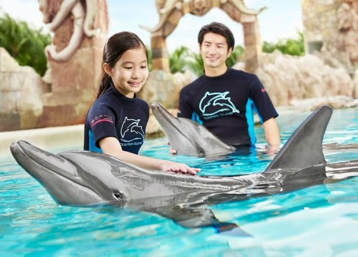 Дельфинарий Dolphin Island