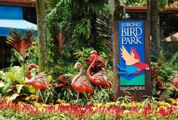 Парк Птиц Jurong