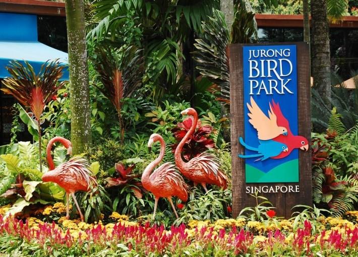 Экскурсия в парке птиц JURONG